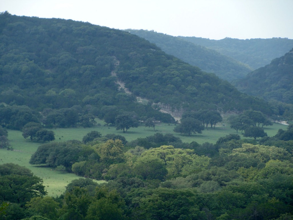 Texas_Hill_Country_187N-2