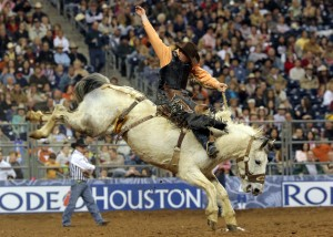 Houston-Rodeo