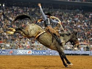 http://meekospark.com/wp-content/uploads/2014/04/Rodeo-Houston-cowboy-riding-a-bucking-horse_0802591.jpg